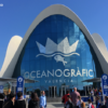 """ヨーロッパ最大の水族館!バレンシア""""オセアノグラフィック""""行き方・見どころet"""
