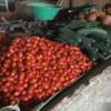 日本と違う? モロッコで手に入る野菜